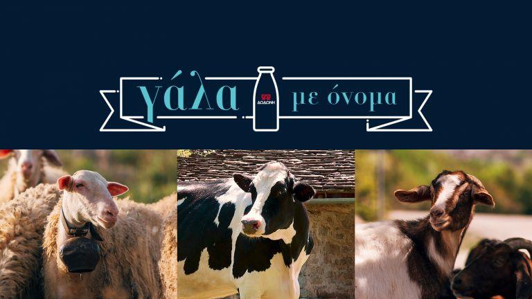 Η ΔΩΔΩΝΗ γιορτάζει την Παγκόσμια Ημέρα Γάλακτος για 4η συνεχόμενη χρονιά | vita.gr