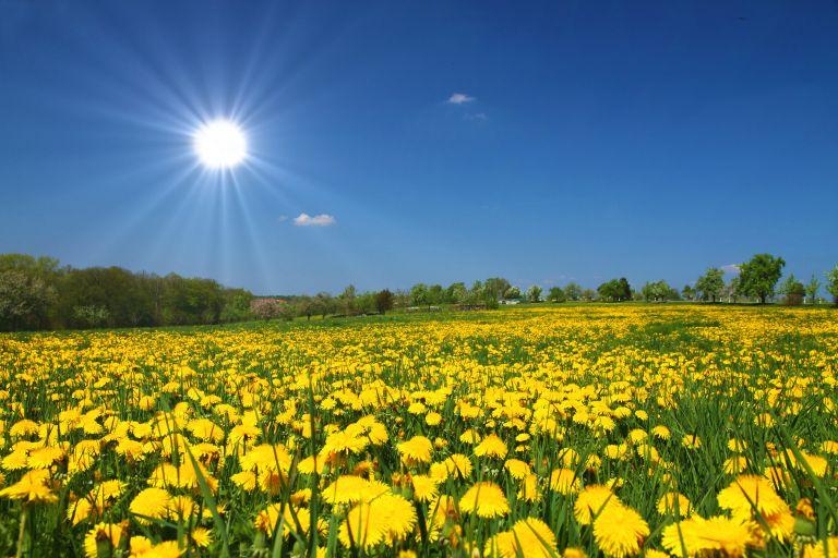 Καλοκαιρινός ο καιρός –  Πάνω από τους 30 βαθμούς η θερμοκρασία | vita.gr
