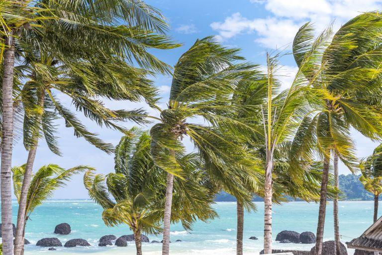 Άνεμοι 7 μποφόρ και υψηλές θερμοκρασίες – Που θα «χτυπήσουν» 40αρια | vita.gr