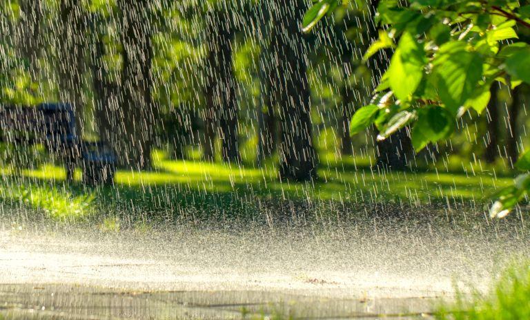Κακοκαιρία θα σαρώσει και σήμερα τη χώρα: Βροχές, καταιγίδες, νέα πτώση θερμοκρασίας | vita.gr