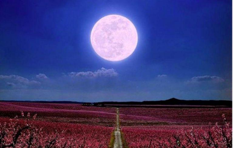 Τι φέρνει η Νέα Σελήνη στους Ιχθύς στο κάθε ζώδιο;   vita.gr