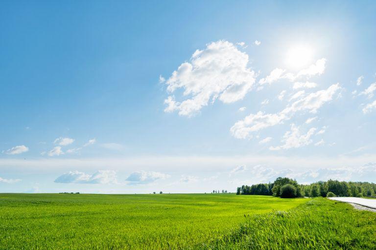 Ηλιοφάνεια και υψηλές θερμοκρασίες σήμερα σε όλη τη χώρα | vita.gr