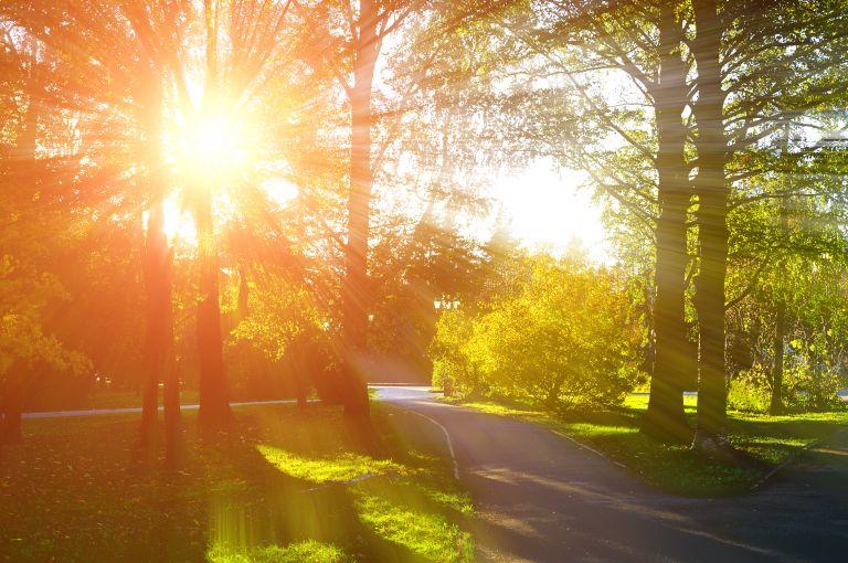 Πρόγνωση Καλλιάνου στο MEGA: Καλός ο καιρός μέχρι την Τετάρτη | vita.gr