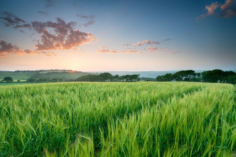 Ανοιξιάτικος καιρός με ήλιο και άνοδο της θερμοκρασίας | vita.gr