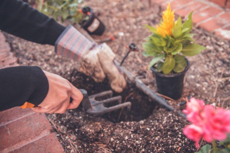 Τέλειες συμβουλές για να φτιάξεις τον κήπο σου | vita.gr