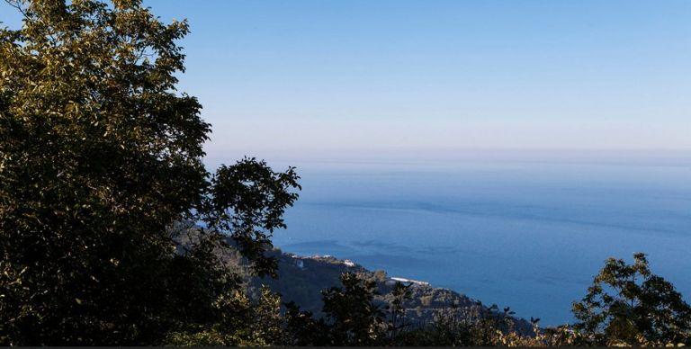 Μαγνησία: Η αγαπημένη ελληνική περιοχή των διάσημων για διακοπές | vita.gr