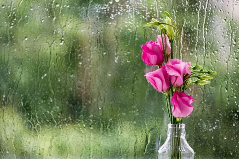 Καιρός: Βροχές και καταιγίδες – 7 μποφόρ στο Αιγαίο | vita.gr