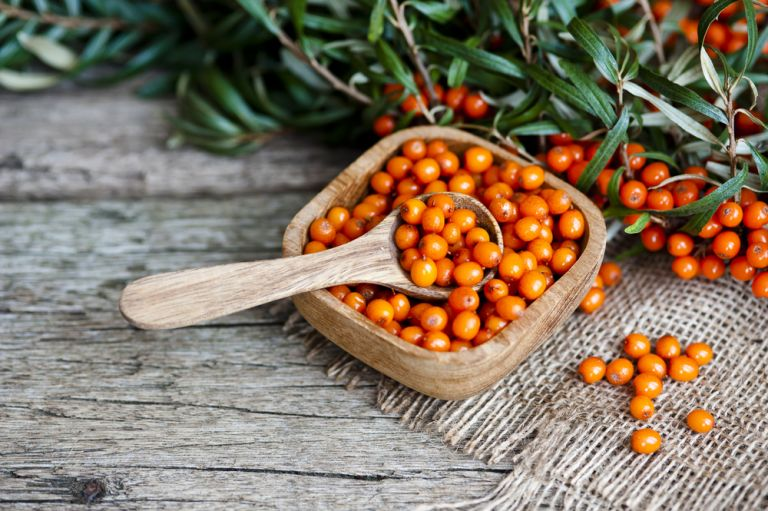 Ιπποφαές: 5 λόγοι για να το εντάξουμε στη διατροφή μας | vita.gr