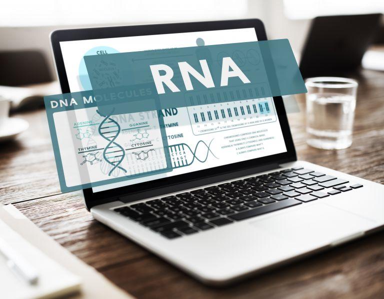 Κοροναϊός: Στο φως «κρυφό» γονίδιο που επηρεάζει την μεταδοτικότητά του | vita.gr