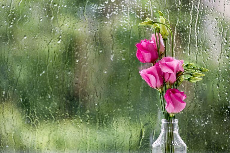 Καιρός : Βροχές και καταιγίδες σήμερα | vita.gr