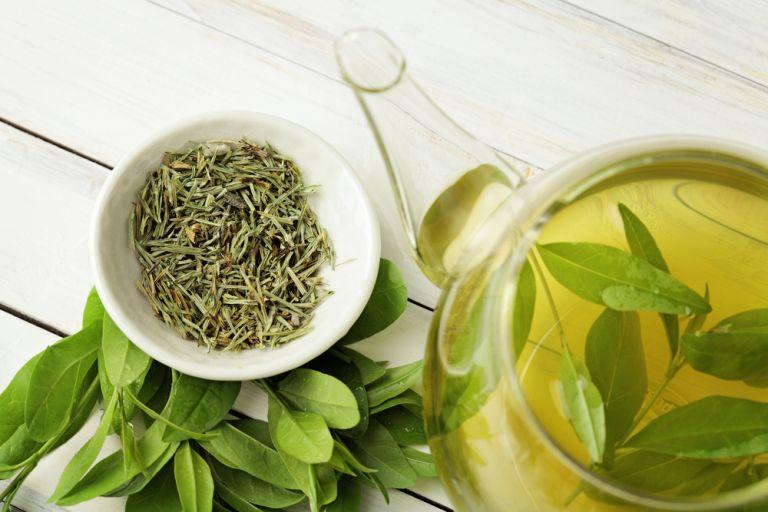 Πράσινο τσάι: Φυσική πηγή αντιοξειδωτικής προστασίας | vita.gr