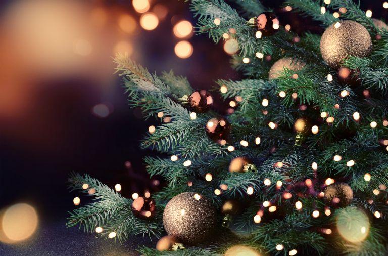 Χριστουγεννιάτικο δέντρο: Πώς γεννήθηκε η παράδοση | vita.gr