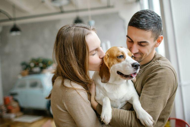 Νέα έρευνα επιβεβαιώνει ότι ο σκύλος σας πράγματι ζηλεύει | vita.gr