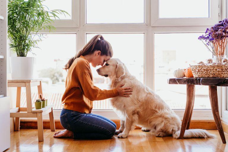Κατοικίδια: Συνδέονται πράγματι με την αληθινή ευτυχία; | vita.gr