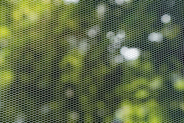 Μήπως έχετε (πράγματι) αλλεργία στα κουνούπια; | vita.gr