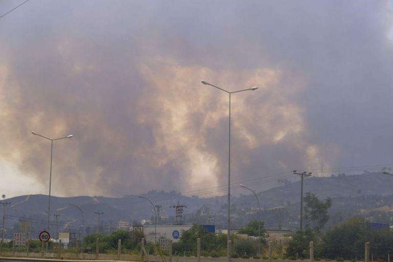 Φωτιές στην Ελλάδα – Τα μέτρα για να αποφύγουμε το «ζοφερό μέλλον» | vita.gr