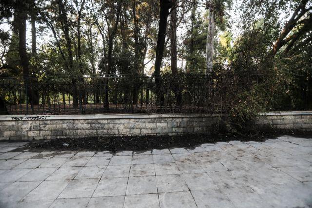 Φωτιά στο Πεδίον Άρεως – Σύλληψη γυναίκας για εμπρησμό   vita.gr