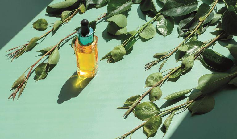 5 φυσικά συστατικά που χαρίζουν υπέροχη επιδερμίδα   vita.gr