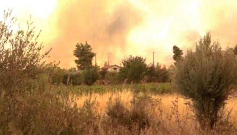 Καίγονται σπίτια στα Βίλια – Εκκενώνεται ο οικισμός   vita.gr
